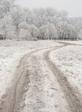Winter and road Stock Photography