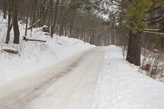 Winter Road In Woods Stock Image