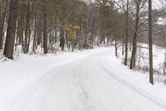 Winter Road In Woods Stock Photo