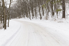 Winter Road In Woods Stock Photography