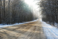 Winter road through the woods Royalty Free Stock Photo