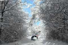 Wild winter roads. Cars on road through forest in winter time Stock Photography