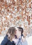 Winter romance Royalty Free Stock Photos