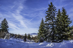 Winter. In Romania, Mures, Deda Stock Photo
