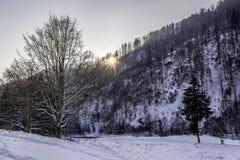 Winter. In Romania, Mures, Deda Royalty Free Stock Photos