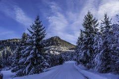 Winter. In Romania, Mures, Deda Stock Images
