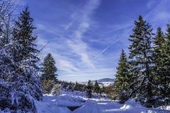 Winter. In Romania, Mures, Deda Stock Image