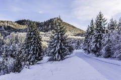 Winter. In Romania, Mures, Deda Stock Photography