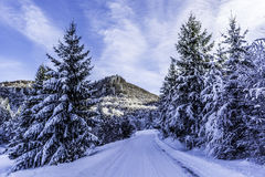 Winter. In Romania, Mures, Deda Royalty Free Stock Image