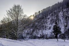 Winter. In Romania `Valea-Bistrei Stock Images