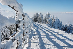 Winter in Romanian mountain royalty free stock images