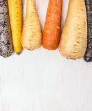 Winter root vegetables on white wooden  background Royalty Free Stock Images