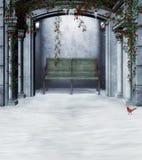 Winter rose garden Stock Photo