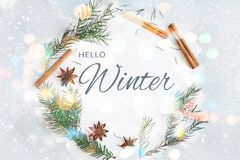 Winter round frame wreath composition. Fir branches, star anise, cinnamon on pastel blue background vector illustration