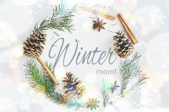 Winter round frame wreath composition. Fir branches with cones, star anise, cinnamon on pastel blue background stock illustration