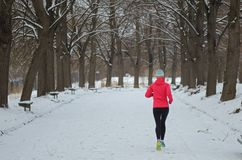 Winter running in park: happy active woman runner jogging in snow, outdoor sport and fitness. Concept Stock Photography