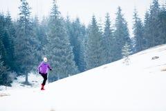 Winter running woman, jogging inspiration and motivation. Winter running woman. Sport, fitness, jogging inspiration and motivation. Young happy woman cross Stock Photos