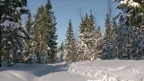 Winter running Stock Image