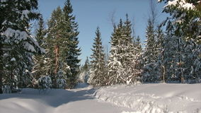 Winter running stock video
