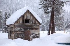 Winter in rural area royalty free stock photography