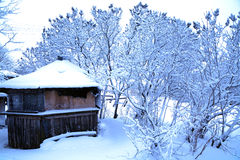 Winter in rural area Stock Photo