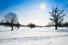 Winter rural countryside landscape Stock Images