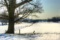 Winter rural countryside landscape Stock Image