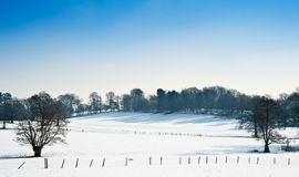 Winter rural countryside landscape Royalty Free Stock Photography