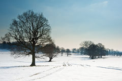 Winter rural countryside landscape Stock Photography