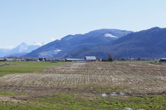 Winter Rural Farm. Winter on a farm in British Columbia's Fraser Valley area Stock Photos