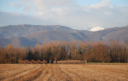 Winter in Rural Friuli Royalty Free Stock Images