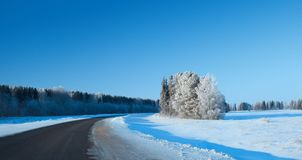 Winter rural highway in frosty day stock photos