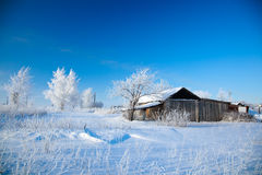 Winter rural landscape. Royalty Free Stock Images