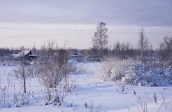 Winter rural landscape Royalty Free Stock Photo