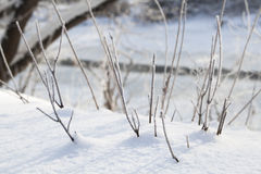 Free Winter Rural Landscape Royalty Free Stock Photography - 65851677