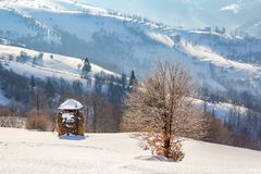 Winter rural landscape, haystack and lonely tree on the backgr stock photography