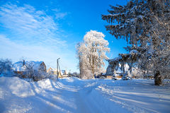 Winter rural landscape Stock Photos