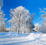 Winter rural landscape with the road the forest and the village Royalty Free Stock Photography