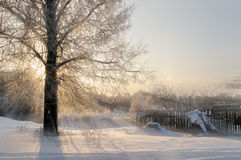 Winter rural landscape Stock Images
