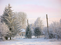Winter rural landscape under snow Royalty Free Stock Photography