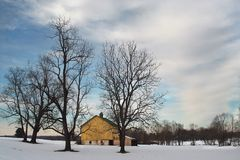 Winter rural landscape with yellow barn and blue sky. This snowy pasture, with its cluster of shade trees near a historic barn, grounds the onlooker, but the Stock Photography
