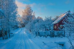 Free Winter Rural Road And Trees In Snow Stock Images - 49084494