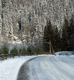 Winter rural road covered with snow on pine forest Stock Photography