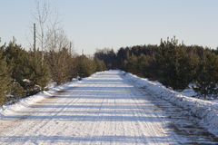 Winter rural road Royalty Free Stock Photo