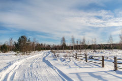 Winter rural road Stock Photography