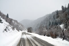 Winter rural road royalty free stock photography