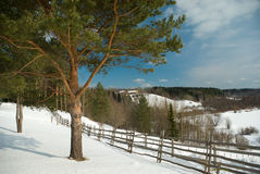 Winter rural russian landscape Stock Photography