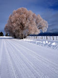 Winter Rural Scene 3 Stock Photography