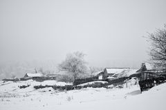 Winter rural scene Stock Photos