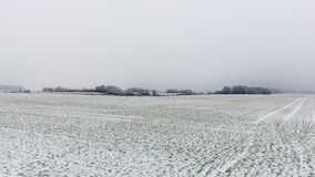 Winter rural scene with fog and white fields Royalty Free Stock Photography